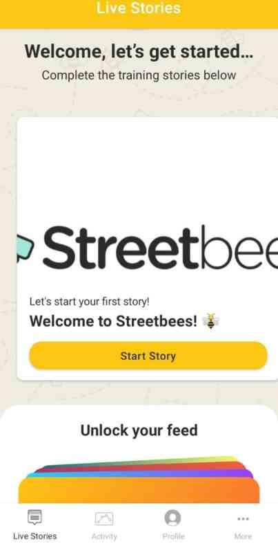 Streetbees Surveys